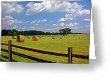 Sun Shone Hay Made Greeting Card