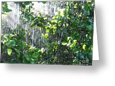 Sun Shower Photograph Greeting Card