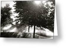 Sun Showers Greeting Card