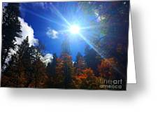 Sun Up Greeting Card