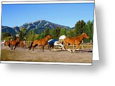 Sun Valley Stables Greeting Card