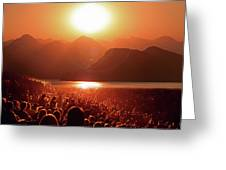 Sun Worshipers Greeting Card