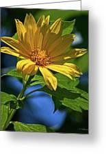 Sun Yellow Greeting Card