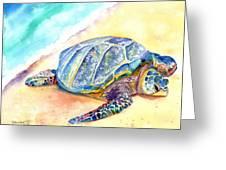 Sunbathing Turtle Greeting Card