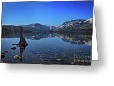 Sunbeams On Fallen Leaf Lake Greeting Card
