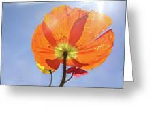 Sunburned Greeting Card