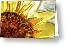 Sunburst Sunflower Greeting Card