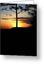Sunburst Sunset Greeting Card