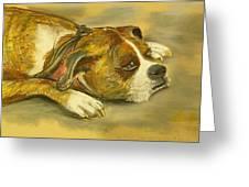 Sunday Arts Fair Dog In A Mood Greeting Card by Deborah Willard
