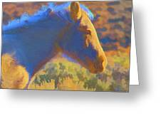 Sunday Morning At The Red Willows Greeting Card
