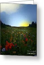 Sundown Wildflower Meadow Greeting Card