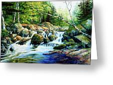 Sunfish Creek Greeting Card