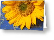 Sunflower And Skeleton Key Greeting Card
