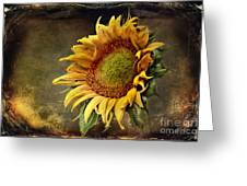Sunflower Art 2 Greeting Card