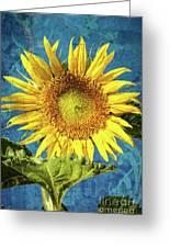 Sunflower Art Greeting Card