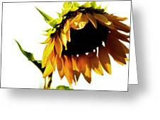 Sunflower Art Greeting Card