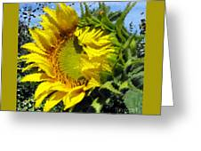 Sunflower By Design Greeting Card