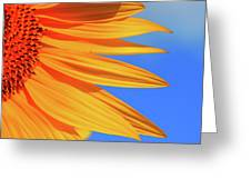 Sunflower Elegance Greeting Card
