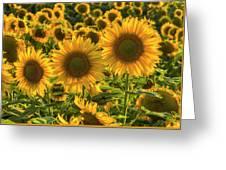 Sunflower Family Greeting Card