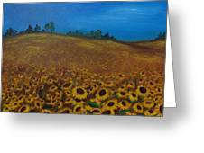 Sunflower Field 3 Greeting Card
