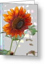Sunflower Fun II Greeting Card
