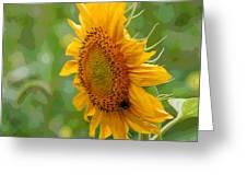 Sunflower Fun Greeting Card
