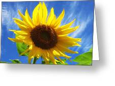Sunflower Glow Greeting Card