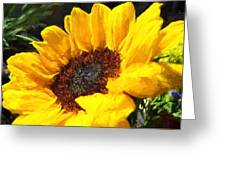 Sunflower Impression Greeting Card