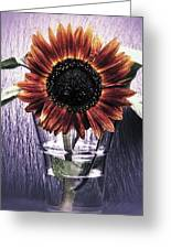 Sunflower In A Cup Greeting Card
