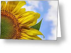 Sunflower In The Clouds Greeting Card