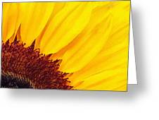 Summer Gold Greeting Card by Julian Perry