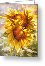 Sunflower Light Greeting Card