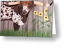 Sunflower Longhorn Greeting Card