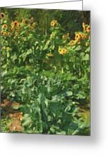 sunflower No.5 Greeting Card