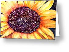 Sunflower Of Georgia Greeting Card
