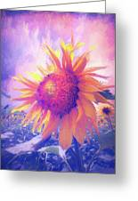 Sunflower Oil Painting Greeting Card