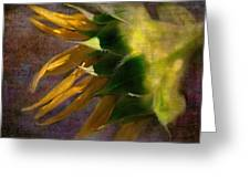 Sunflower On The Side Greeting Card