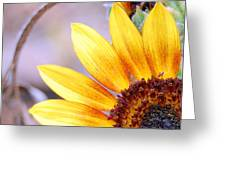 Sunflower Perspective Greeting Card