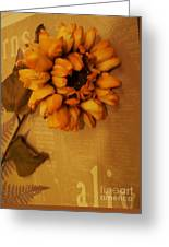 Sunflower Power Greeting Card