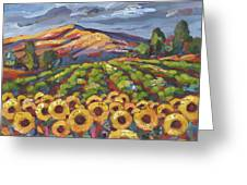 Sunflower Ranch Greeting Card