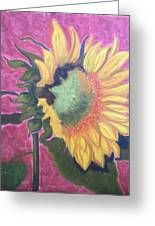 New Mexico Sunflower Greeting Card