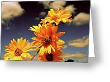Sunflower Skies Greeting Card