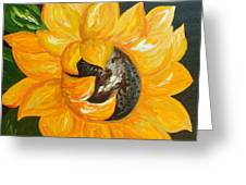 Sunflower Solo Greeting Card