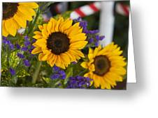 Sunflower Triplets Greeting Card