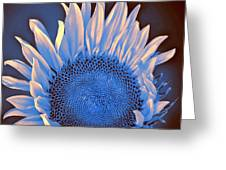 Sunflower Moonlight Greeting Card