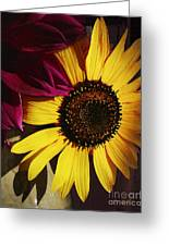 Sunflower With Dahlia Greeting Card
