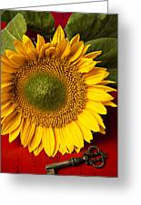 Sunflower With Old Key Greeting Card