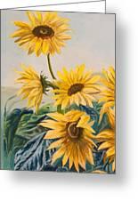 Sunflowers 1 Greeting Card