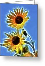 Sunflowers-5246-fractal Greeting Card