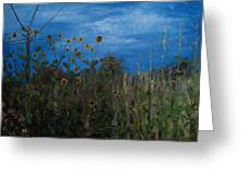 Sunflowers And Corn With Lines Greeting Card